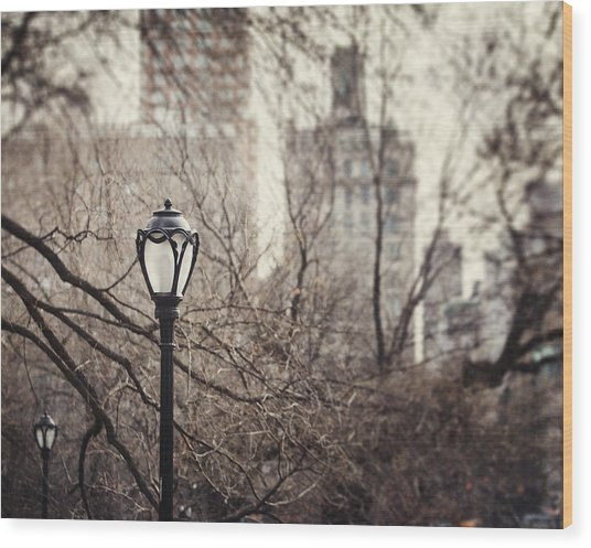 In The Shadow Of The Upper East Side  Wood Print by Lisa Russo