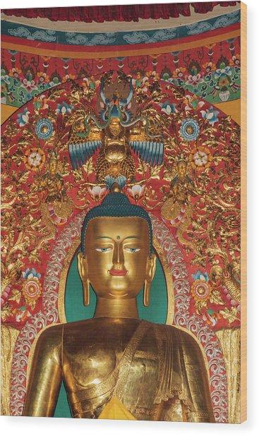 India, Himachal Pradesh, Dhauladhar Wood Print