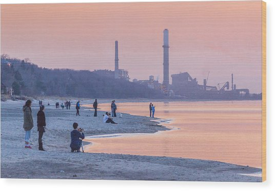 Indiana Dunes National Lakeshore Wood Print
