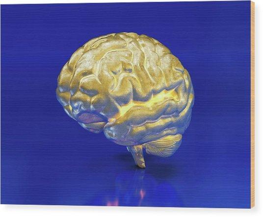 Intelligence Wood Print