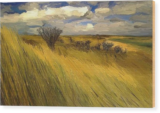 Iowa Prairie Grasses  Wood Print