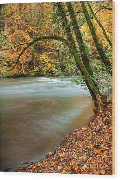 Irrel Falls Wood Print