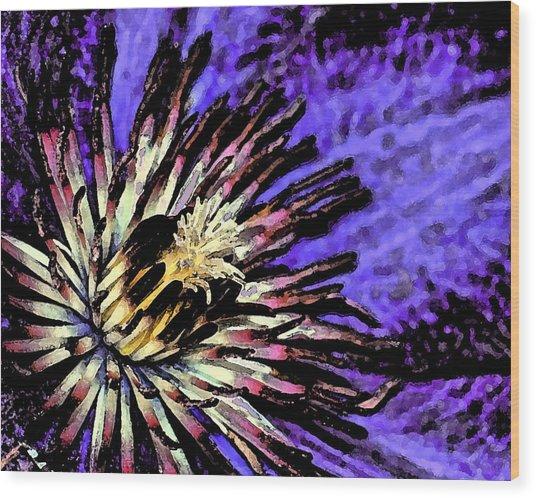 Jackmanii Clematis Wood Print