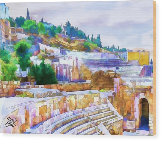 Jordan/amman/roman Theater Wood Print