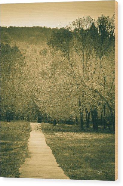 Just A Short Walk Wood Print