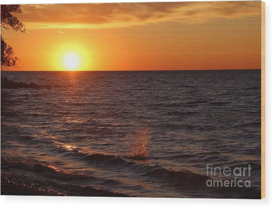 Lake Ontario Sunset Wood Print