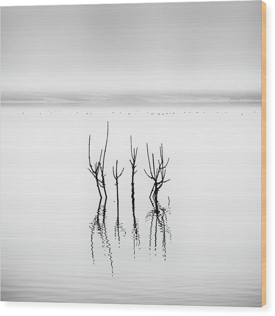 Lake Reflections Wood Print by George Digalakis
