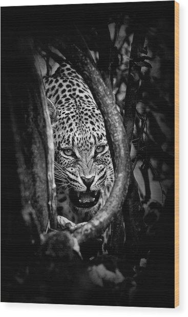 'leopard's Lair' Wood Print