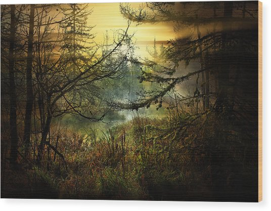 Life In The Forest Wood Print