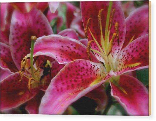 Lily Bee Wood Print