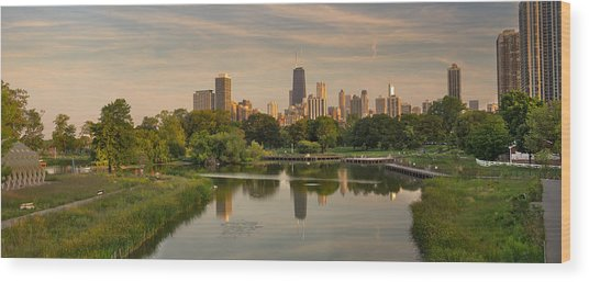 Lincoln Park Lagoon Chicago Wood Print