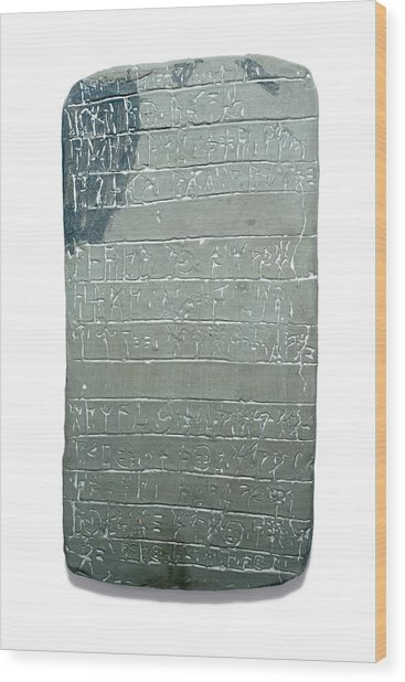 Linear B Tablet Wood Print by David Parker