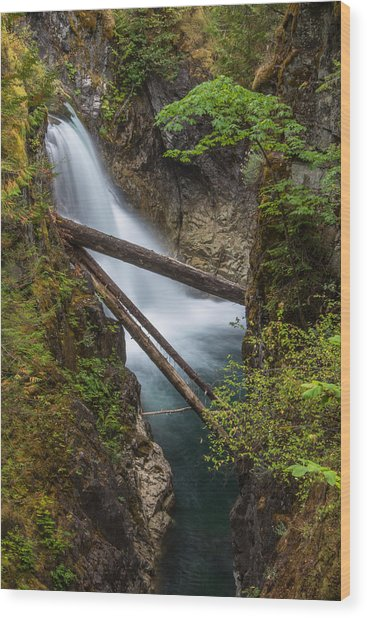 Little Qualicum Falls Wood Print