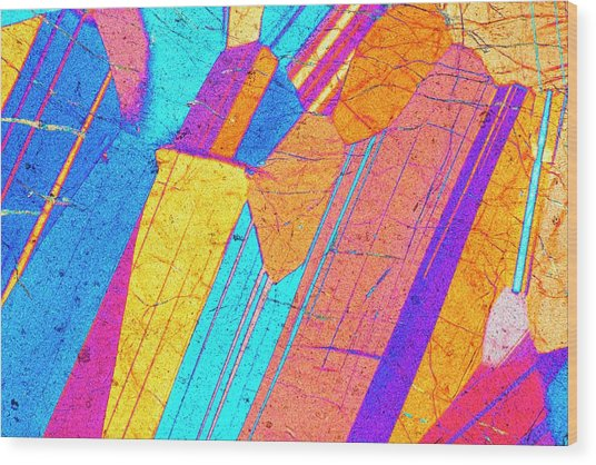Lm Of A Thin Section Of Gabbro Rock Wood Print by Alfred Pasieka/science Photo Library