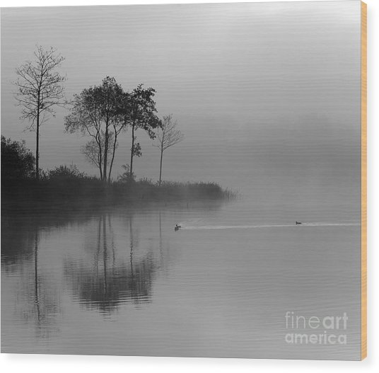 Loch Ard Trees In The Morning Mist Wood Print