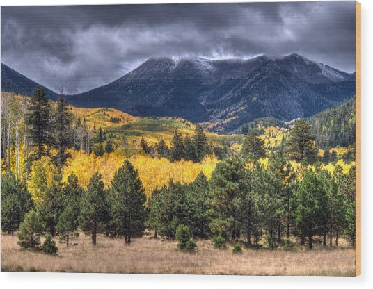 Lockett Meadow Wood Print