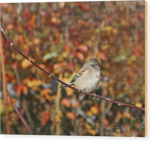 Lone Sparrow Wood Print