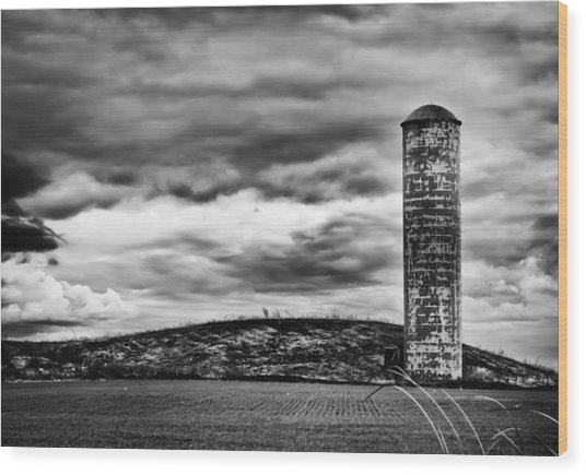 Lonely Silo Wood Print by Ricky L Jones