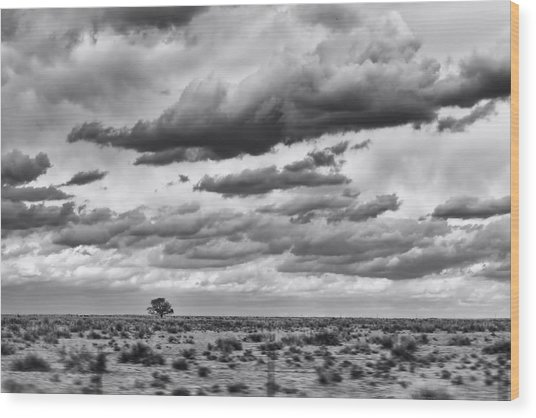 Lonesome Tree Bw Wood Print by Alan Tonnesen