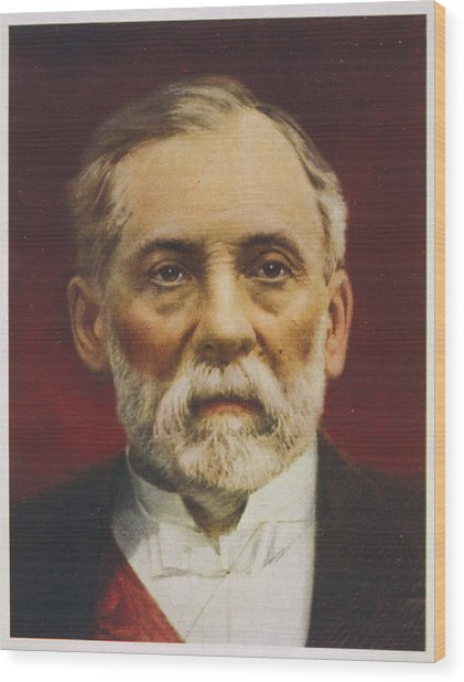 Louis Pasteur (1822 - 1895) French Wood Print by Mary Evans Picture Library