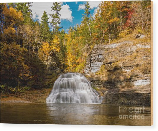 Lower Treman Falls Wood Print