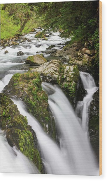 Lush Waterfall Olympic National Park Wood Print