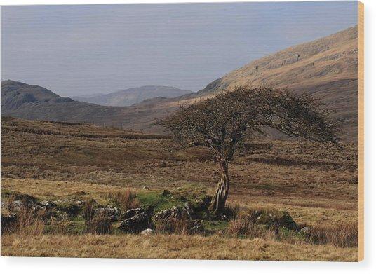 Maam Valley Wood Print by Peter Skelton