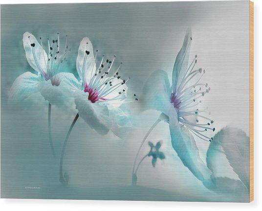 Madrid Spring Wood Print