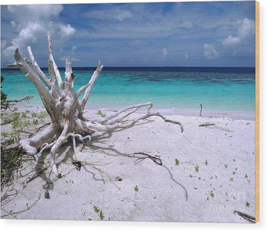 Maldives 11 Wood Print by Giorgio Darrigo