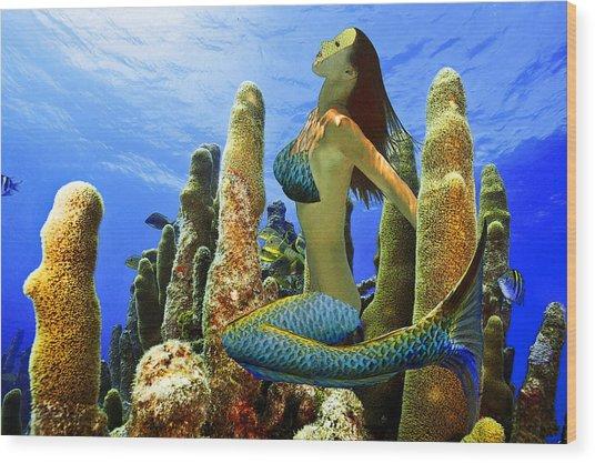 Masked Mermaid Wood Print