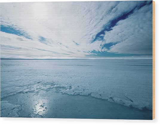 Melting Arctic Sea Ice Wood Print by Louise Murray/science Photo Library