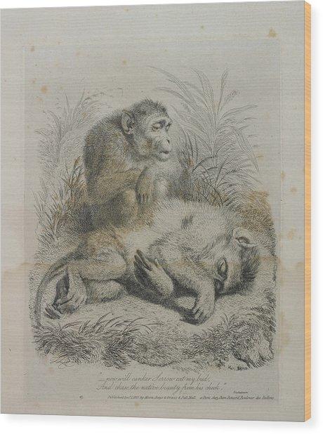 Monkeys Wood Print