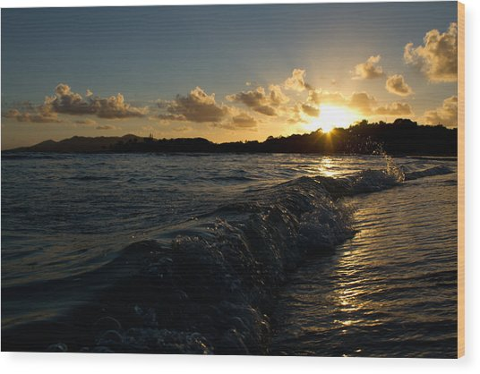 Morning Dip 2 Wood Print