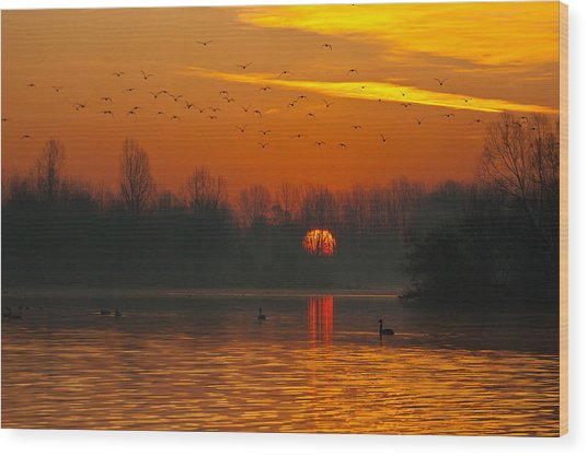 Morning Over River Wood Print