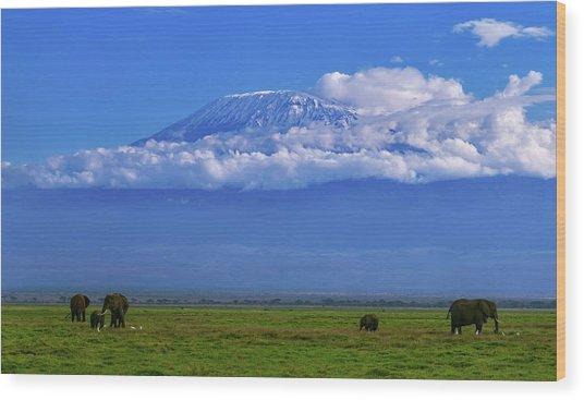 Mount Kilimanjaro Wood Print by Babak Tafreshi