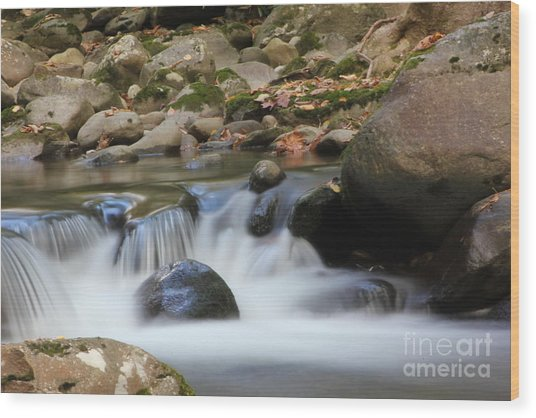 Dreamy Mountain Stream In The Smoky's Wood Print
