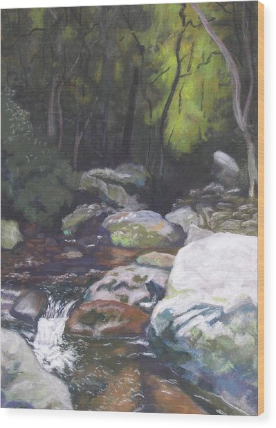 Mountain Stream At Dusk Wood Print