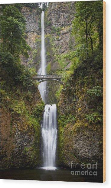 Wood Print featuring the photograph Multnomah Falls by Brian Jannsen