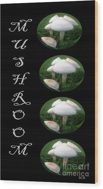 Mushroom Art Collection 1 By Saribelle Rodriguez Wood Print