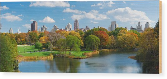 New York City Manhattan Central Park Panorama Wood Print