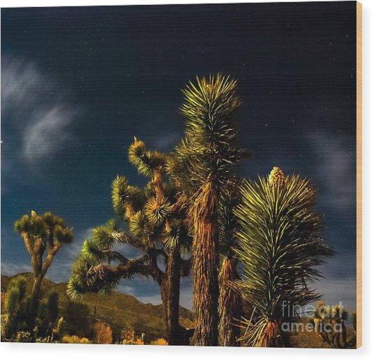 Night Desert Wood Print