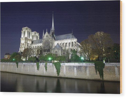 Notre Dame Cathedral Wood Print by Ioan Panaite