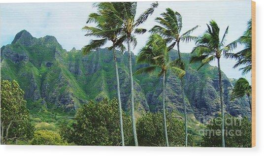 Oahu Mountains Wood Print