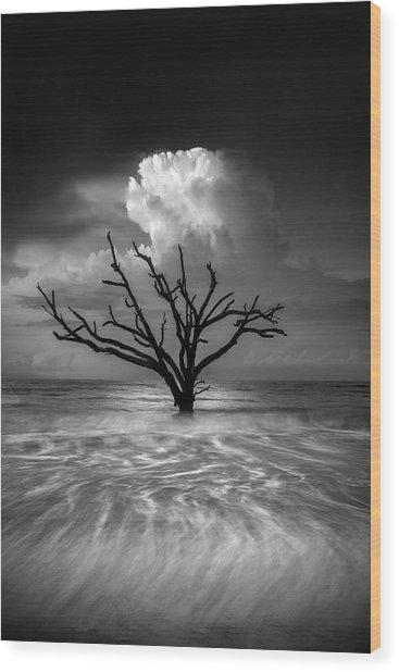 Oceanus Wood Print