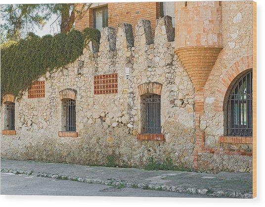 Old Buildings In Codorniu Winery In Sant Sadurni D'anoia Spain Wood Print