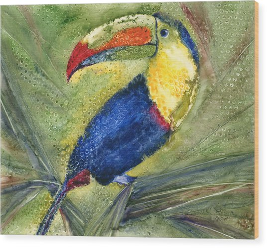 One Cant But Toucan Wood Print