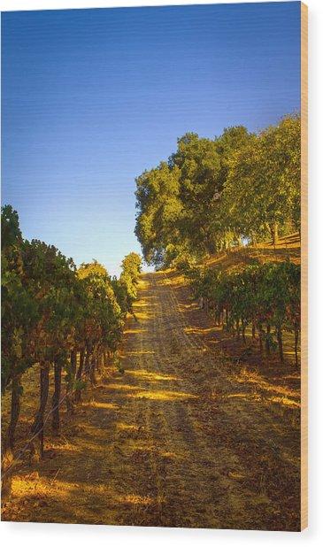 Opolo Winery Wood Print