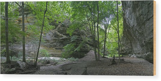 Ottawa Canyon Wood Print by Gary Lobdell