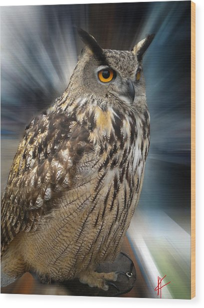 Owl Alba Spain  Wood Print
