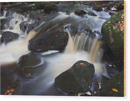Padley Gorge Wood Print